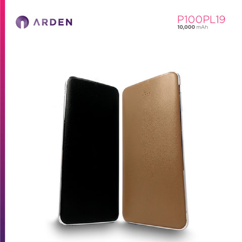 Power Bank - P100PL19 (5)