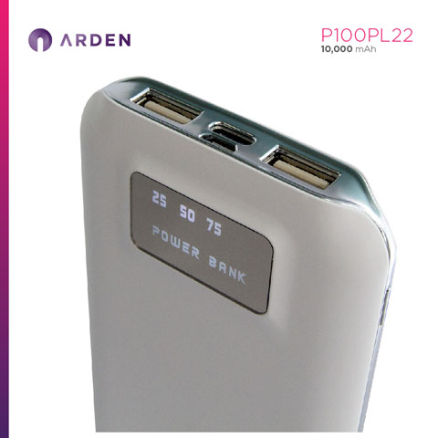 Power Bank - P100PL22 (5)