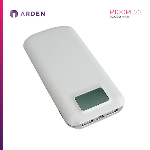 Power Bank - P100PL22 (6)