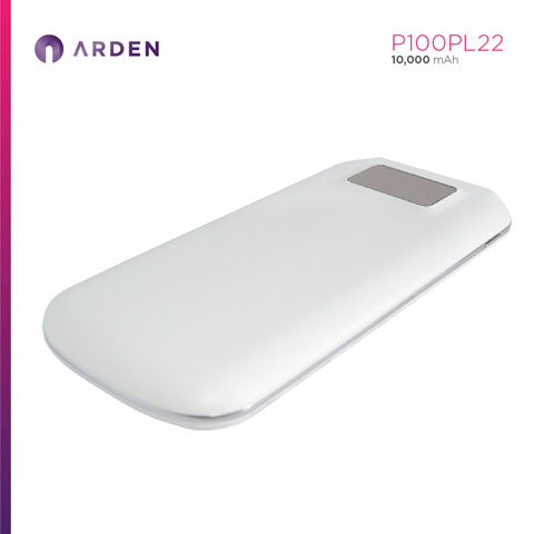 Power Bank - P100PL22 (7)